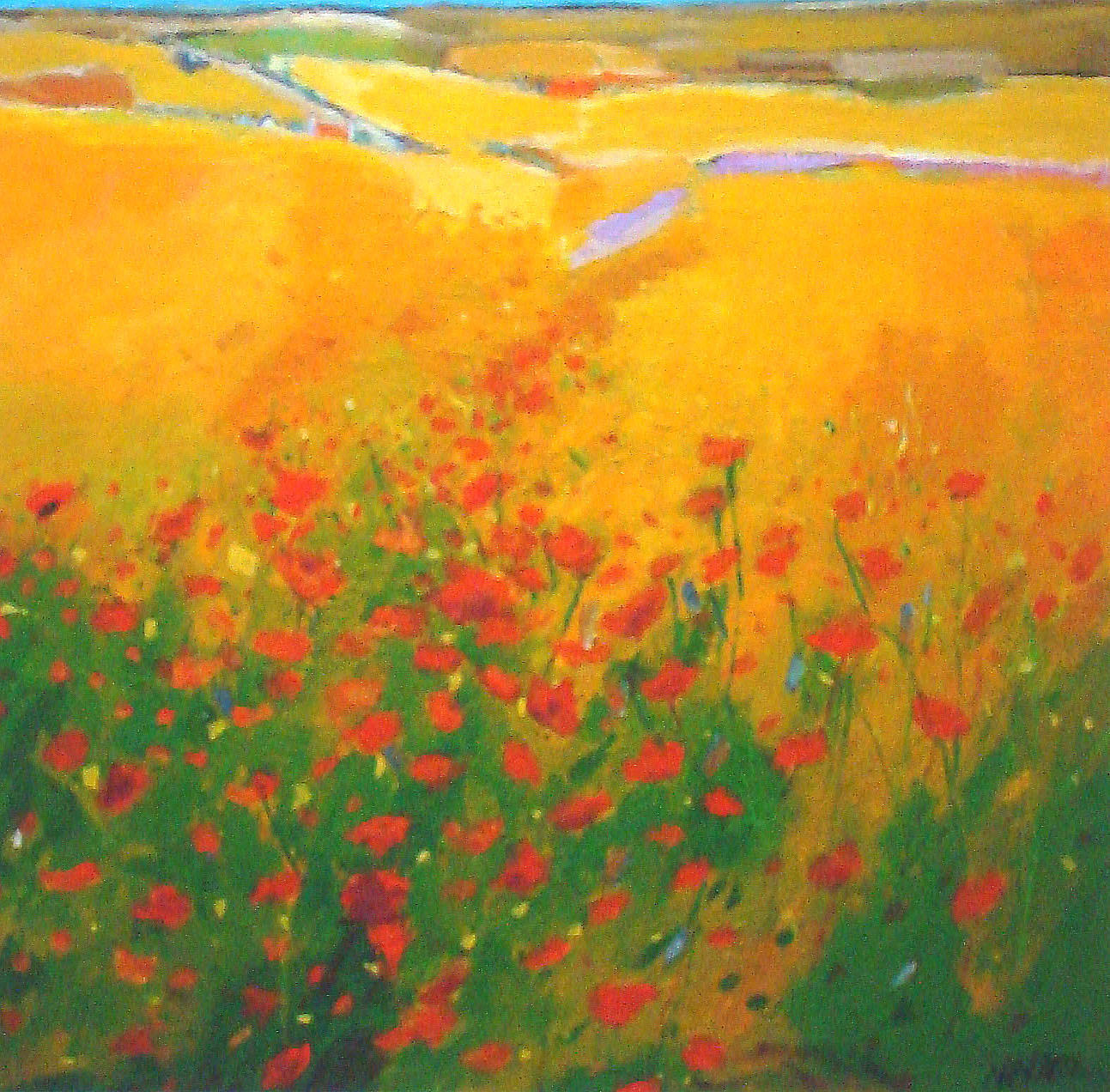 Print of Harvest Poppies by Prints
